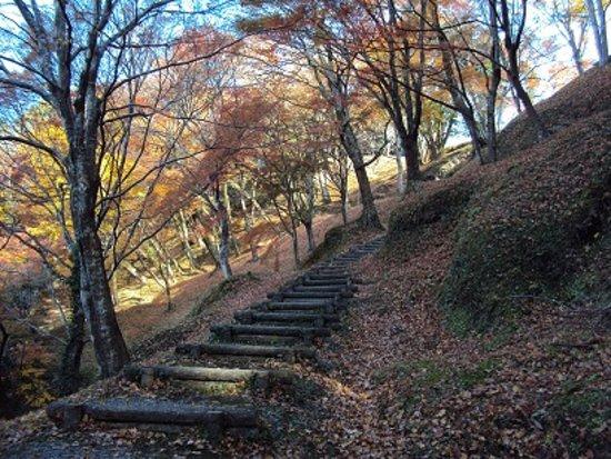 Yujaku Park : 歩道の状態