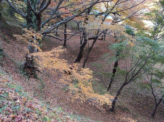 Yujaku Park : 緑とのバランス
