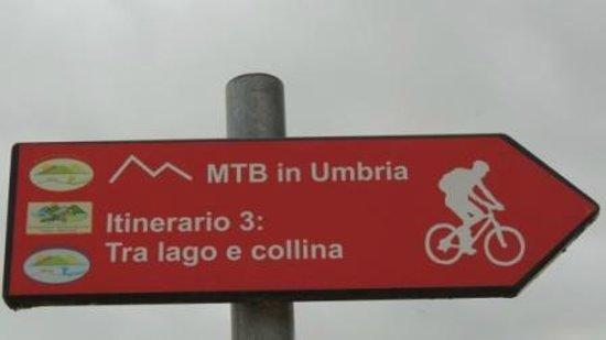 Al Casolare: percorso in bici colline e laga