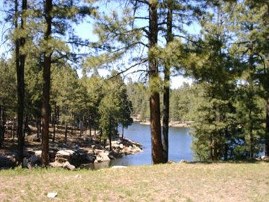 Quality Inn Payson: Woods Canyon Lake on the Mogollon Rim