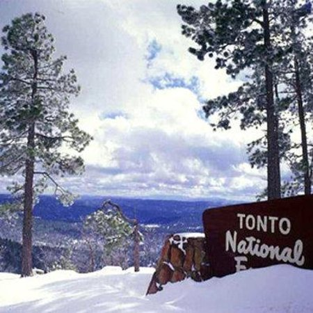 Quality Inn Payson: Winter in Tonto National Forest