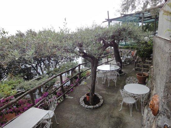La Maliosa d'Arienzo: uno degli angoli panoramici per la prima colazione