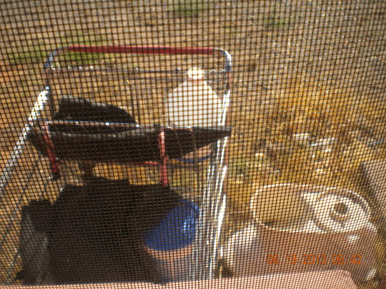 Knights Inn Page AZ : view from window...shopping cart w/ trash in it & broken toilet...EWWW!