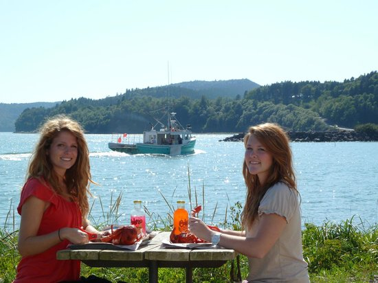 Alma Lobster Shop: Eat lobsters while viewing the fishing boats going by