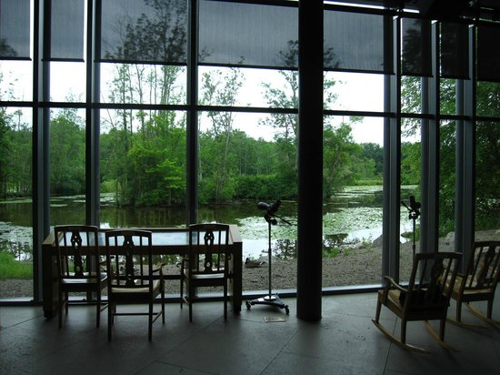 Cornell Lab of Ornithology: Viewing Area inside Cornell's Lab