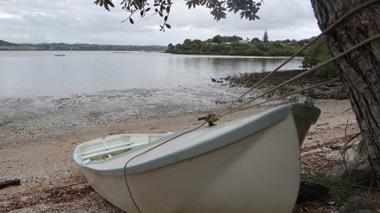 Aroha Island Ecocentre: Loads of nice photo spots