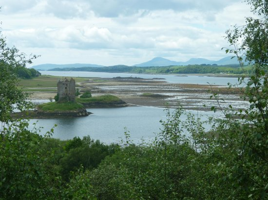 ‪‪Castle Stalker View Cafe‬: view from cafe‬
