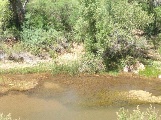 Verde Canyon Railroad: Verde River