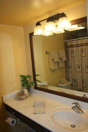 Hotel on the Cay: Bathroom