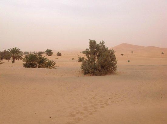 Dune Luxury Camp: Noche en el desierto ...una experiencia màs