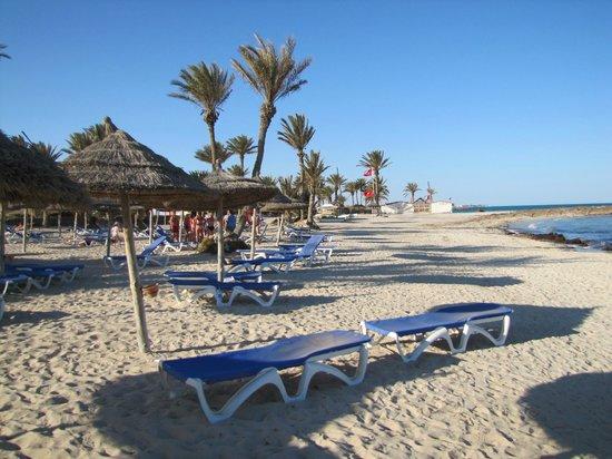 Hotel Palm Azur: plaża