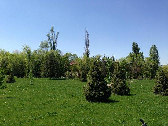 Almaty Resort: территория очень большая!