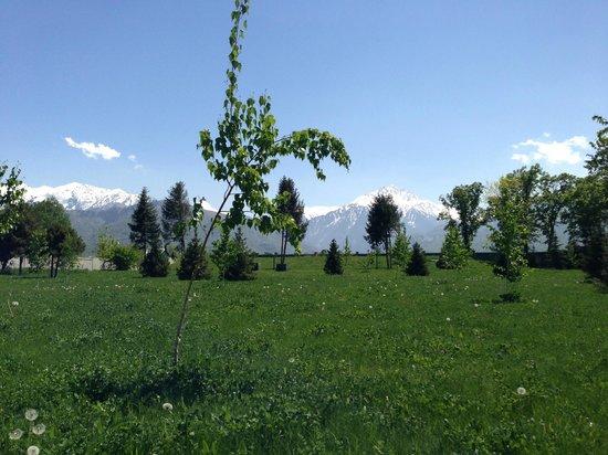 Almaty Resort: территория