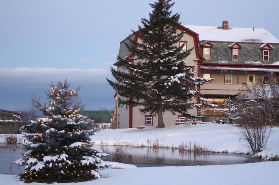 Winter Scenes Picture Of The Skywood Manor Inn