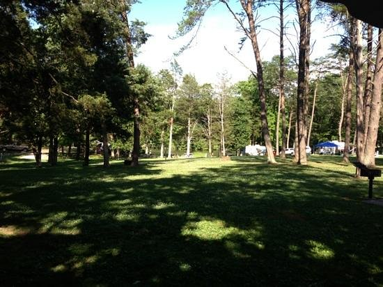 Cove Lake State Park: campground view site #53