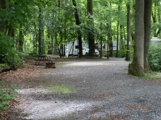 Colonial Woods Campground: An open RV site