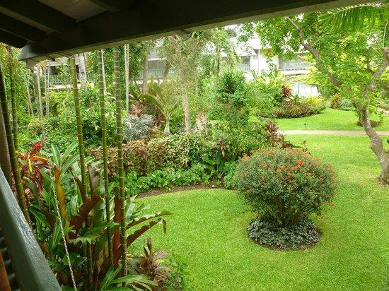 Cobblers Cove: Jardim do hotel