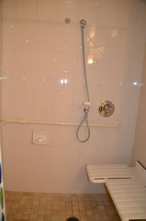 Disney's Paradise Pier Hotel: Standard Room got stuck w/ handicap bthrm but was big