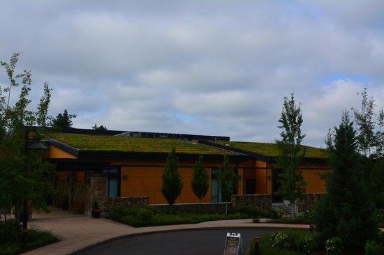 Allison Inn & Spa : Vegetation on roof top