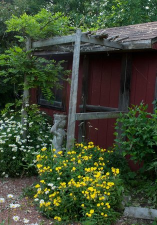 Applewood Hollow Bed and Breakfast: Applewood Hollow B&B grounds