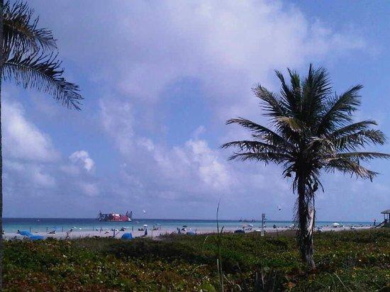 50 Ocean at Boston's on the Beach : Overlooking beautiful Delray Beach