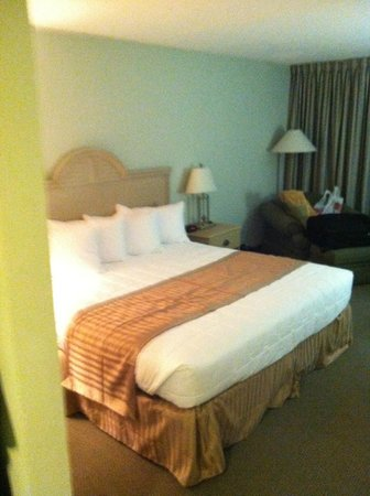Hutchinson Island Plaza Hotel and Suites: King Bed was Nice