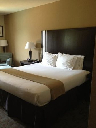 Holiday Inn Express Hotel & Suites Houston NW-Beltway 8-West Road: cama king size