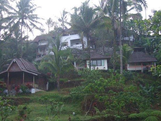 Villa Nirmala: Main house bungalow