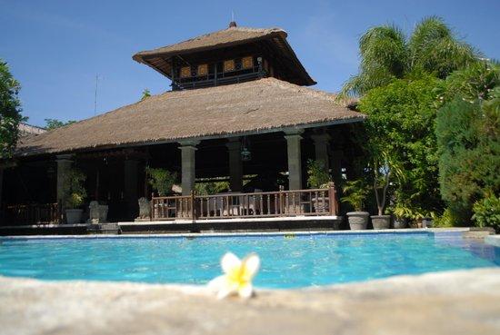 โรงแรมบาหลี อากุง วิลเลจ: the swimming pool