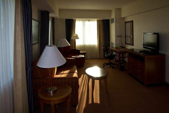 Hilton Garden Inn Ithaca : Living Room