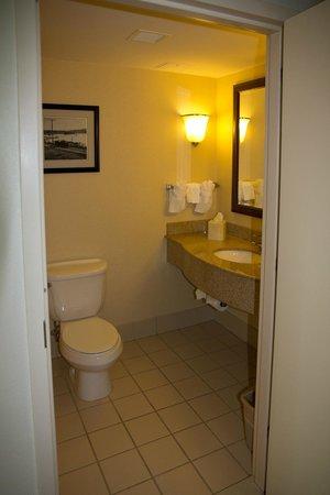 Hilton Garden Inn Ithaca : Powder Room (2nd Bathroom)