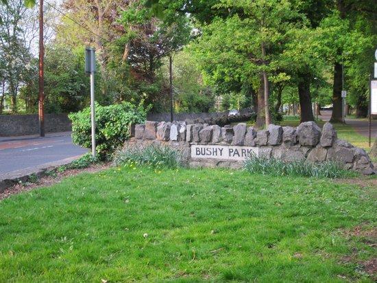 Bushy公园