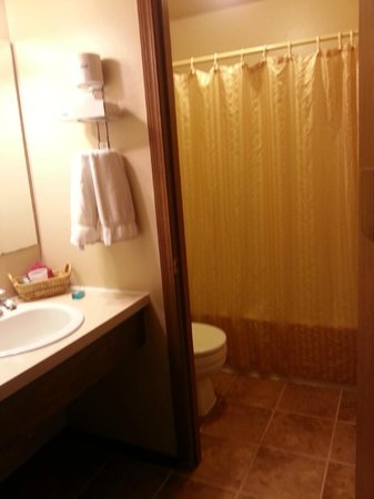 Beluga Lake Lodge : Bathroom