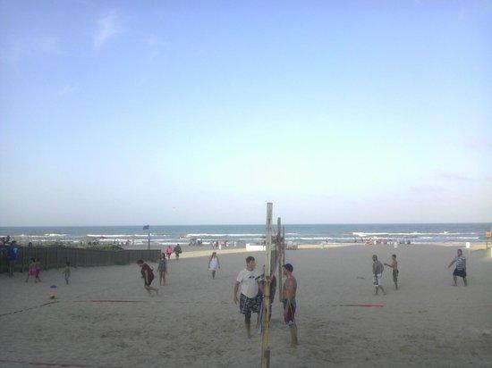 Surf Motel: Bar view