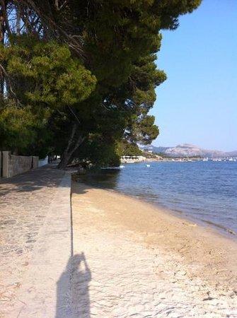 Hotel Villa Singala: pine walk beaches