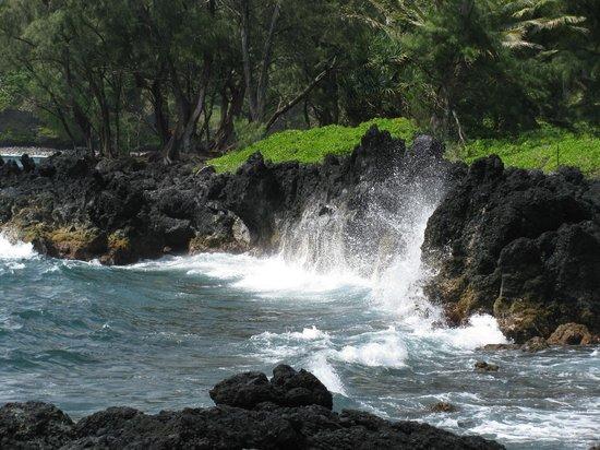 Gray Line - Polynesian Adventure Tours: hana