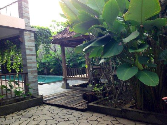Rumah Batu Villa & Spa: View from the restaurant