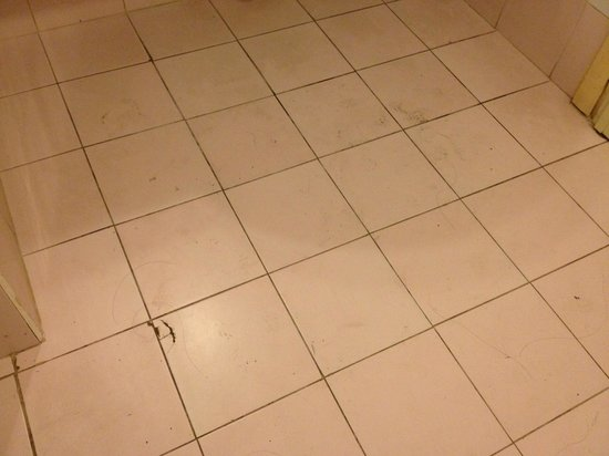 Dean Hamlet Hotel: Questa e la loro filosofia del pulire i bagni..