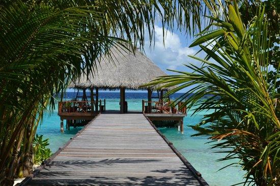 Filitheyo Island Resort: Причал