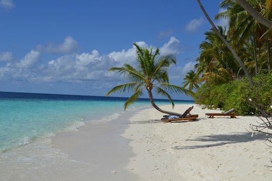 Filitheyo Island Resort: Райское наслаждение!