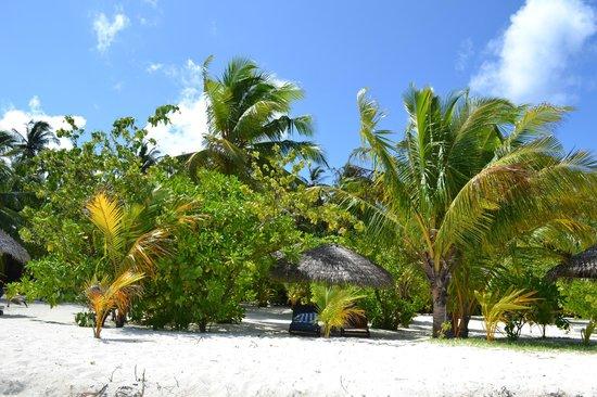 Filitheyo Island Resort: Пляж возле deluxe villa