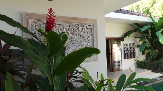 Villa Coco: Garden/pool area