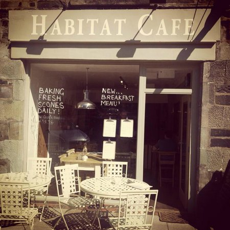 Habitat Cafe: view from the outside