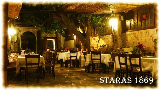 Staras: under the tree