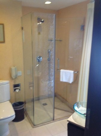 Xijiao Hotel Beijing : Shower cubicle with wallpaper rather than tiles