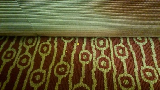 TownePlace Suites Detroit Novi : More food on the floor (it's called a vacuum cleaner... go buy one)