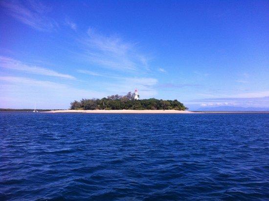 Reef Sprinter: Island in the sun.
