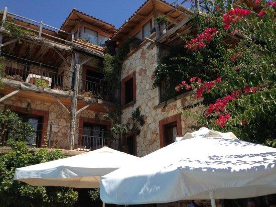 Hotel Fidanka: Apartments
