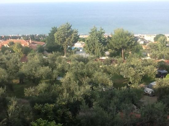 Villaggio Europe Garden Photo