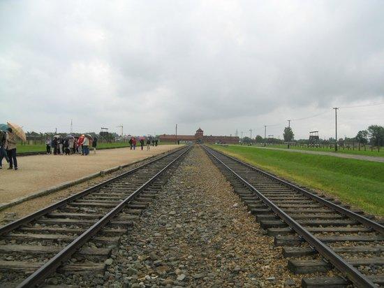 Krakow Discovery - Auschwitz Salt Mine Tours: Birkenau